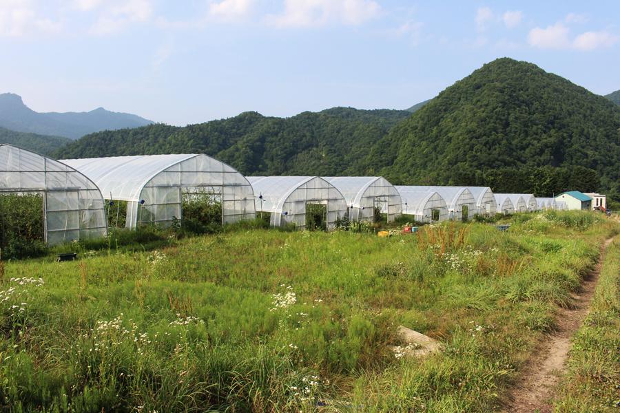 風のがっこう 札幌農場